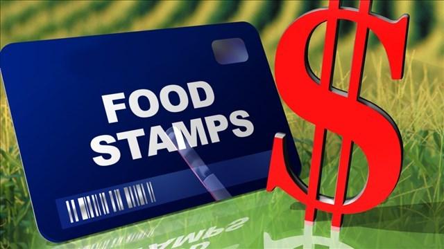 Food Stamps For Florida Seniors